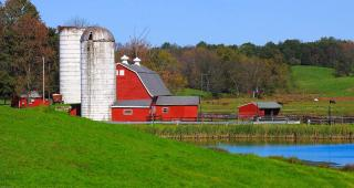 Red barn with silos in green field next to a pond